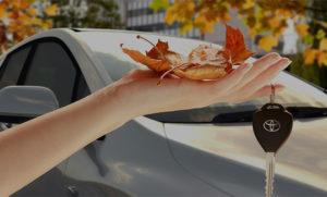 Покупка авто осенью